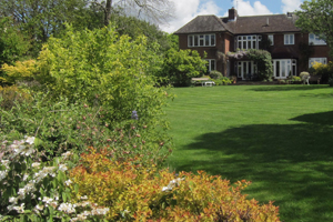 Gardening services in West Kent
